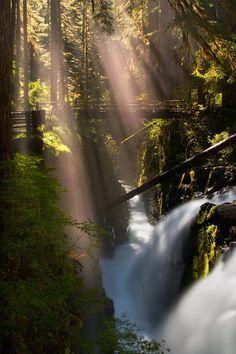 #waterfall #water #wood #sun #light