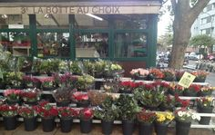 Offrez un joli bouquet de roses à petit prix | Rise And Shine