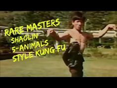 Master of Martial Arts - YouTube The Grandmaster, Animal Fashion, Kung Fu, Martial Arts, Masters, Teacher, Chimichurri, Youtube, Larry