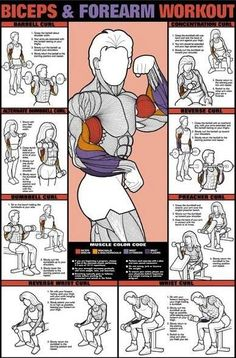 "Bicep workout poster... for my broken ""wings"""