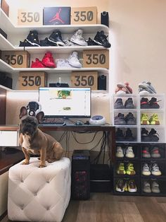 33 Exquisite Room Decor For Men Green - Room Dekor 2020 Bedroom Setup, Bedroom Decor, Sneaker Storage, Mens Room Decor, Hypebeast Room, Shoe Room, Dog Rooms, Room Goals, Black Decor
