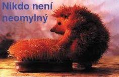 Nikdo není neomylný | Vtipné obrázky - obrázky.vysmátej.cz