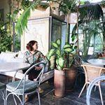 Reggeli kávéra várva Milano egyik legbájosabb kávézójában. A hely egy múzeumban van, a gyönyörű építészeti elemek mellé nem is kellett semmi fakszni, csak pár kerti bútor meg egy csomó növény. Szeretem az ilyen ötletes enteriőröket! És a kávé+reggeli is nagyon jó volt. #morningslikethis #milan #weekendtraveler #passionpassport #prettycities Plants, Plant, Planets