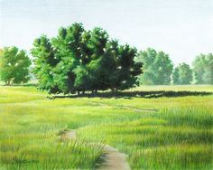 Learn how to use a red under drawing to draw realistic landscape greens in colored pencil. Step-by-step illustrations and instructions.