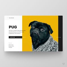 by Mykola Shevchuk Follow us @welovewebdesign - Lin