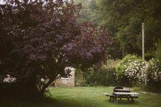 25 Boyton - 6 Outdoor Furniture, Outdoor Decor, Park, Plants, Home Decor, Homemade Home Decor, Parks, Plant, Interior Design