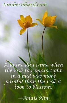 """""""And the day came when the risk to remain tight in a bud was more painful than the risk it took to blossom."""" —Anais Nin"""