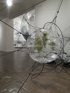 Tomás Saraceno, Lighter Than Air, installation view, Blaffer Art Museum; foreground: Biosphere 06, 2009; acrylic, water dripping system, nylon thread, tillandsia plants; 40 cm diameter, 50 cm diameter, 100 cm diameter spheres; edition 03, 1 AP; courtesy the artist and Tanya Bonakdar Gallery, New York; photo © Tom DuBrock
