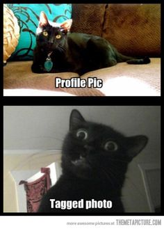 Please don't tag me in unattractive Facebook photos. ....So...all of them.