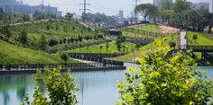 Galería de Parque Fluvial Padre Renato Poblete / Boza Arquitectos - 2