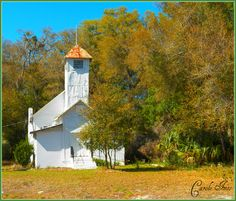 For years while driving down US 441 in Lake County from Orlando, FL I used this old church as a landmark as to where to turn when spending a day shopping or having lunch in nearby Mt. Dora. In Mar 2013 I decided to get closer and take some photos as well do some research. Built in 1894, it is known as the Mt. Zion Primitive Baptist Church. There were only six members as of last record, but it now appears to be abandoned plus there is no paved access to the church