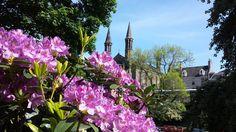 Beautiful Aberdeen