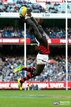 Buy official AFL prints of your favourite AFL players and AFL moments Real World Games, Essendon Football Club, Australian Football League, Highland Games, World Of Sports, Sports Games, Pose Reference, Rugby, Muscles