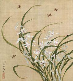 78-清-余穉-花鸟图十二开-05-长尾寿诞鸟