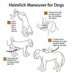 Heimlich maneuver. Valuable information.