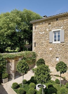 jardin - buis, gravillons, vieux murs..