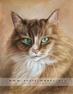 Cat portraits gallery - Pet Portraits & Animal Art - Dogs, Cats and others
