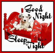 ᐅ Good Night images, greetings and pictures for WhatsApp (Page - SendScraps Good Night Dear Friend, Good Night I Love You, Romantic Good Night, Good Night Sleep Tight, Good Night Image, Good Morning Good Night, Day For Night, Good Night Greetings, Good Night Messages