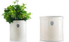 Stoneware Planting Crock - Kaufmann Mercantile