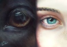 """Custom """"Eye to Eye"""" Horse and Rider oil portrait High Quality Realistic painting from your photographs. Wall Art gift for horse lover. Custom Eyes, Vegan Quotes, Gifts For Horse Lovers, Oil Portrait, Realistic Paintings, Horse Photography, Dramatic Photography, Going Vegan, Horses"""