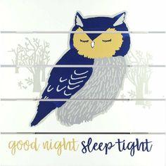 Good Night Prayer, Good Night Gif, Good Night Quotes, Wood Plank Art, Good Night Sleep Tight, Wood Home Decor, Wall Decor, Nursery Decor, Plank Walls