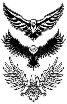 falke: Set von Vektor-Adler. Symbol, Abzeichen oder Etikett-Design-Vorlage. Vektor-Illustration. Sport-Team-Symbol Vorlage.
