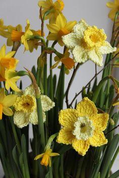 Kostenloses Bild auf Pixabay - Narcis, Gehäkelte Blumen                                                                                                                                                                                 Mehr