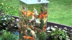 Fish Observation Tower