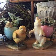 Easter is coming and we have great items to decorate your home or give as a sweet gift. #Easter #Bunny #Chicks #decorations #spring #lakenorman #lkn #shopsmall #supportlocal