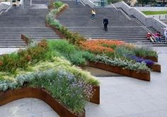 "A wonderful addition to the International Urban Garden Competition ""Bilbao Jardín 2009"", by Diana Balmori of New York-based Balmori Associates and a design that literally 'climbs the stairs' with a undulating vegetated strip and cor-ten walls splaying out in a wider planter at the lowest landing."