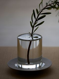 The Shallows Vase. By Critiba Design+Direction gives the illusion of a flower floating in a puddle.