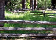 """Good fences make good neighbors.""   Walt Whitman"