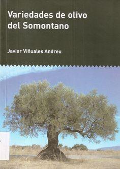 Del 27 de noviembre al 4 de diciembre Porque tres investigadores oscenses han identificado diez nuevas variedades autóctonas este año¡¡ http://epsh.unizar.es/~jcasan/variedades_olivo/