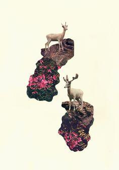 Francisca Pageo: Double Deer, 2012 #deers #collage #contemporaryart