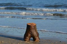 Log torso on beach.