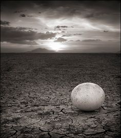 Abandoned Ostrich Egg. Amboseli, 2007. © 2010 Nick Brandt