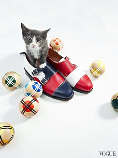 What a combo, bocce and kittens in Vogue
