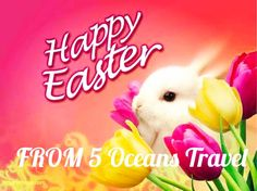Happy Easter #traveling ##travelling #resorts #hotel #hotels