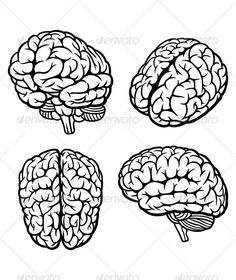 Simple Drawing Of Brain Brain Clipartsco Art Reference Pinterest