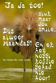 goeie more afrikaans oulik maandag & goeie more afrikaans oulik Great Quotes, Me Quotes, Qoutes, Funny Quotes, Afrikaanse Quotes, Weekday Quotes, Goeie Nag, Goeie More, Day Wishes