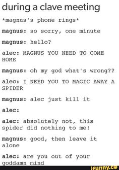 This is so Annabeth Mortal Instruments Books, Shadowhunters The Mortal Instruments, Shadowhunters Series, Teen Wolf Ships, Magnus And Alec, Cassie Clare, Cassandra Clare Books, Alec Lightwood, City Of Bones