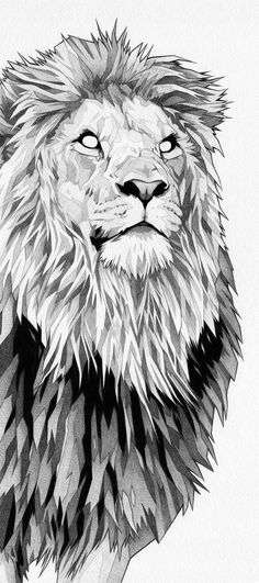 Tattoo sketches 815996026217679468 - Heart Of a Lion – So Cool How people can emotion with their Drawing … I found This and This Reminded me of Nobility and Bravery. Lion Drawing, Lion Design, Animal Art, Sketches, Animal Drawings, Art Drawings, Drawings, Drawing Sketches, Lion Art
