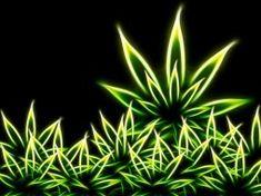 побочный эффект при курении марихуаны