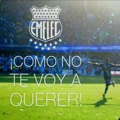 Emelec Bicampeón del fútbol ecuatoriano (Lo que dicen los hinchas ...