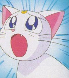 Artemis (Sailor Moon)