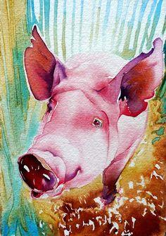 Pig watercolor Hulit Wills