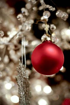 magic adorned by shimmering lights/ornaments with a pop of color with the red  ornaments...