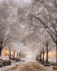 snow, winter, and christmas image Winter Szenen, Winter Magic, Winter Night, Winter Season, Winter Travel, Winter Photography, Nature Photography, City Photography, Wonderful Places