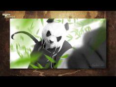 "Making of ""Mists of Pandaria"" Cinematic [RU] - YouTube"