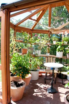 Nice inside a Bramshall Cedar Greenhouse.